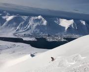 Island_Akuyeri_Viking_Heliskiing_Artic_Skifahrer_Siglufjordur_travel-zone.ch_